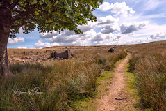 _DSC.0059 - Bricks and mortar (SWJuk) Tags: lancashire england unitedkingdom gb swjuk uk britain burnley dunnockshaw crownpoint moors moorland grasses derelict derelictbuildings tree overhanging shade light sunlight path footpath track bluesky clouds landscape vanishingpoint 2018 aug2018 summer nikon d90 nikond90 tokina1116 wideangle rawnef lightroomclassiccc