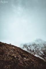 Lagos de Covadonga XVIII (Álvaro Hurtado) Tags: nikon d7200 sigma naturaleza nature paisaje landscape asturias españa spain oviedo monte mount montaña mountain lagos lakes covadonga picos europa ercina niebla fog mist árboles trees vegetación vegetation nubes clouds