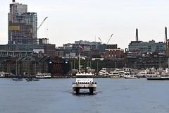 Whale Watcher Behind (AntyDiluvian) Tags: boston massachusetts harbor ferry fastferry highspeedferry catamaran salacia provincetown ptown longwharf whalewatch cruiseboat
