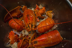 2018 - photo 247 of 365 - the end result of a lobster dinner (old_hippy1948) Tags: lobster shells