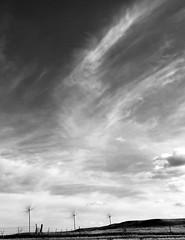wind turbines (christaki) Tags: northdakota windturbines windmills windpower ignd bw monochrome