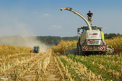 Corn Silage 2018 | CLAAS // CASE IH // JOSKIN (martin_king.photo) Tags: mais corn cornsilage maisfeber 2018harvestseason summerwork powerfull martin king photo machines strong agricultural greatday great czechrepublic welovefarming agriculturalmachinery farm workday working modernagriculture landwirtschaft martinkingphoto machine machinery field huge big sky agriculture tschechische republik power dynastyphotography lukaskralphotocz day fans work place harvester forage clouds inaction action worker eos new weather flickr claas jaguar forageharvester case ih caseihoptum optum joskin joskindrakkar dust