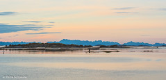 Evening  mood at Nordskot Brygge with Lofoten in the background (Petra Schneider photography) Tags: norge norway nordnorwegen nordskotbrygge sunset sonnenuntergang steigen lofoten