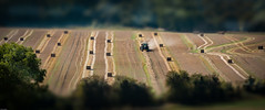 Tiny Tractor (paullangton) Tags: tractor tilt tiny field hertfordshire nature hay bale canon autumn straw lines crop landscape shadow green trees dof light colour countryside yellow stuble harvest