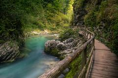 Vintgar Gorge (Pt.2) (RigieNL) Tags: vintgar water river longexposure le hike hiking nature awesome awesomeness waterscape explore wandering slovenia europe path sony sonya6000 gorge kloof vintgarkloof vintgargorge dream dreamscape