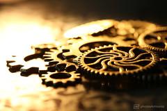 cogwheel collection (photos4dreams) Tags: photos4dreams p4d photos4dreamz macromondays macro macrolens makro zahnrad zahnräder cogwheel