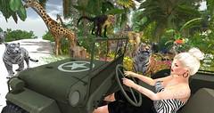 Safari - SPLASH - 50,000L Entry # 2 - Roxy9999 (Roxy River) Tags: secondlife safari jungle girafe monkey elephant zebra tiger
