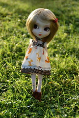 Maddy (Pullip Stica) (*Clemancy*) Tags: pullip stica doll groove junplanning custo wig cancan hiblythe
