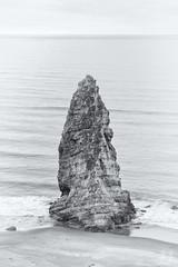 Coastal Monolith (Joshua Johnston Photography) Tags: joshuajohnston oregon pacificnorthwest pnw nature landscapephotography sonya7ii blackandwhite bnw sonyfe70300mmf4556goss