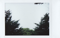 lands end 1 (jayplorin) Tags: fujifilm instax mini 8 instant film san francisco lands end park california