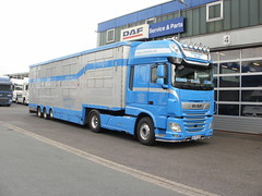 DAF XF FT (4x2) Super Space Cab (DAF Trucks N.V.) Tags: daf xf ft 4x2 superspacecab