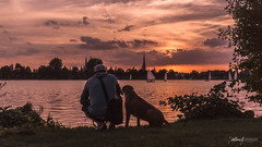 Best Friends (Northcraft Photographs) Tags: best friends beste freunde dog hund sonne sun sunset sonnenuntergang farben colors sky himmel wolken clouds northcraft rhodesian ridgeback water see lake ships boats boote sony alpha a57 sigma