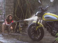 (Marci's) Tags: women ducati moto scrambler ducatiscrambler giallo acqua wash yellow water clean bike icon nikon d7200