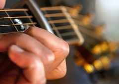 """""""Music s the divine way to tell beautiful, poetic things to the heart"""" -Pablo Casals (Karon Elliott Edleson) Tags: bokeh guitar strings acoustic breedlove 6string love guitarlove macro fingers"""