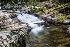 Small waterfall and stream (Merrillie) Tags: landscape nature australia stream hunterrivercatchment newsouthwales rocks upperallyn nsw creek river nationalpark hunterregion green outdoors waterscape allynbrook stones barringtontopsnationalpark water