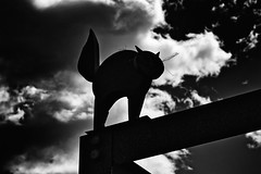 Black Cat (stephaneblaisphoto) Tags: animal representation themes wildlife art craft cat closeup cloud sky creativity day focus foreground livestock low angle view nature no people outdoors sculpture silhouette bw blackandwhite monochrome