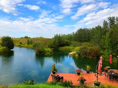 For Judy: Hello from Bluebird Estates! (peggyhr) Tags: peggyhr panorama lake dock clouds reflections hills flowers trees shrubs iphone summer acreage bluebirdestates alberta canada thelooklevel1red