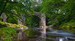 Holne Bridge over the River Dart (SteveH1806) Tags: dart dartmoor devon bridge holne nikon d850 24mmpce