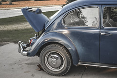 08282011-13 (ReesKlintworth) Tags: 1967 beetle bug carvehicle volkswagen volkswagenbeetle