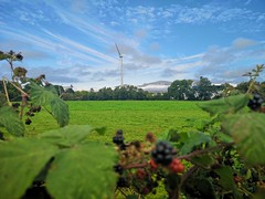 Beautiful day in Killorglin town (krpena.lutkica) Tags: windmill nature scenic sky countryside field raspberries healthy