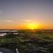 Eden Landing Sunset