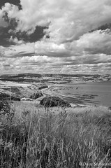 The Whole Bay (daveseargeant) Tags: ravenscar robin hoods bay north yorkshire coast seaside rocks tide leica x typ 113 monochrome white black