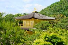 Le temple du Pavillon d'or (Kyoto, Japon)