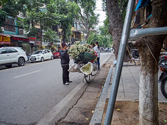 Hanoi Flower Vendor on a Bike (marcocarag) Tags: hanoi vietnam vnm