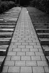 Push Your Bicycle Up the Stairs (RunnyInHongKong) Tags: vuescan nikoncoolscan9000 akasaka nikkor50mmf14g japan nikonf100 minatoku film 35mm tokyo ilfordxp2