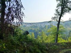 2018 Germany // Westerwaldwanderweg 3 // Blick nach Hillscheid (maerzbecher-Deutschland zu Fuss) Tags: westerwaldwanderweg3 wanderweg wandern natur deutschland germany trail wanderwege maerzbecher hiking trekking weitwanderweg fernwanderweg westerwald ww deutschlandzufuss deutschlandzufus rheinlandpfalz ww3 2018 hillscheid