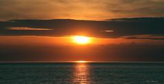SUNSET OVER  ST. LAWRENCE RIVER  |   REFORD GARDENS   | LES JARDINS DE METIS  |  COUCHER DE SOLEIL  |   GASPESIE  |  QUEBEC   |  CANADA (C C Gosselin) Tags: sunset over st lawrence river | reford gardens gaspesie quebec canada sainteflavie canon 7d 7dmarkii rebel t2i canonrebelt2i eos canon7d markii rebelt2i canonrebel canont2i eost2i eos7d eos7dmarkii mark 2 mark2 eos7dmark2 canon7dmarkii ii canoneosrebelt2i canoneos7d canoneos ph:camera=canon coucher de soleil coucherdesoleil les jardins metis