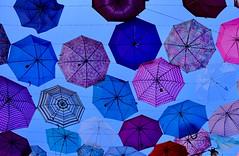 Dancing umbrellas (joanneclifford) Tags: fujifilmxt20 streetart summer quebec gatineau culturetrail sentierculturel parapluies umbrellas