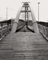 Ponte pedonale (marco.roncoroni.co) Tags: ponte pedonale bianco e nero biancoenero ferro legno linee monocromo cielo acqua bridge blackandwhite bw line