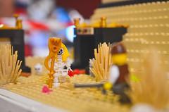 DSC_0093 (skockani) Tags: lego bricks legoland legominifigures cmf minifigures afol toys play fun legomania toyphotography legophotography lug rlug lugskockani legoskockani skockani exibition show
