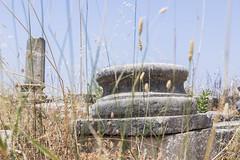 2018/07/09 13h04 ruines de Volubilis (Valéry Hugotte) Tags: 24105 antiquité maroc volubilis canon canon5d canon5dmarkiv colonne romain ruines fèsmeknès ma