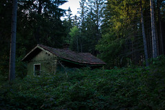 The cabin in the woods (Maria Zaharieva) Tags: land landscape nature forest woods green trees bushes cabin abandoned creepy dark hidden bulgaria