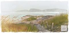 Achill Island #4.  client work Landscape & Design (Minnie Atlass - Landscaper & Designer) Tags: minnieatlass beach sand achill ireland summer sea ocean water landscaper desogn designer build boardwalk path