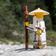 Sensei Wu & Syrphidae (genelabo) Tags: sensei wu syrphidae schwebfliege meister lego minifigure minifig toy outdoor stone stein isar sylvenstein bayern bavaria canon g16 square quadrat sun figure hover fly