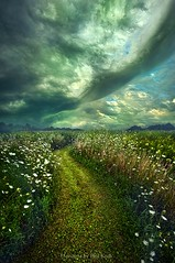 By The By (Phil~Koch) Tags: life mood emotions country outdoors colors living heaven weather horizons lines landscape field art meadow sky horizon sunset clouds scenic vertical photography office portrait serene morning dawn nature natural earth environment inspired inspirational season beautiful hope love joy dramatic unity trending popular canon rural fineart arts shadow sun sunrise light peace wisconsin shadows endless pastel sunlight green blue summer travel path