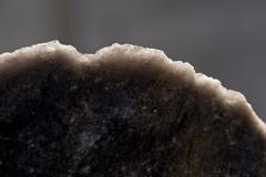 Razer Sharp Obsidian (brucetopher) Tags: macromondays rock obsidian stone edge sharp knife lava volcano volcanic cutting razer tool