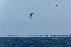Platz da (tleesch) Tags: drausen funsport gewässer kitesurfen natur ort person sonstiges sport wasser wassersport grau inselhiddensee mecklenburgvorpommern deutschland de