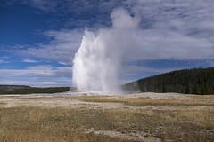 Old Faithful Geyser - Yellowstone National Park (LaurieD326) Tags: oldfaithful geysers geology steam volcanicactivity caldera yellowstonenationalpark fuji fujixt1