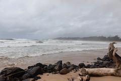 Kealia Beach (xythian) Tags: hi kauai kealiabeach