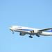 ANA B777 JA756A Landing at Haneda Airport 5
