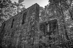 Rock Crusher Building (ruins) (TCeMedia/Telecide) Tags: rock crusher building ruin trees monochrome banning state park minnesota