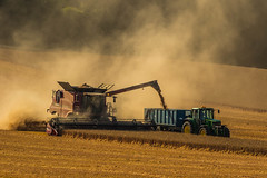 Combine - Rotherfield (Donna Hampshire) Tags: harvest tractor combineharvester combine hampshire donnarobinson donnahampshire inspiremephotographycouk cornfield field light dust farming