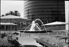 Costa Mesa (westkauai) Tags: fujicagw690 gw690 90mmlens normallens bw blackandwhitefilm costamesa california trixfilm