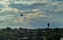 slow & steady (imranh5775) Tags: birds sky cloud photography lanscape imranh5775