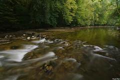 Lison a l'étiage du coté d'Echay (francky25) Tags: lison létiage du coté dechay rivière franchecomté doubs été