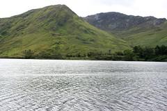 A proximité de Kylemore Abbey, région du Connemara (Comté de Galway, Irlande) (bobroy20) Tags: connemara irlande ireland eire europe galway nature